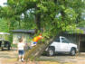 2005.  The last boys to climb the old tree. Tree succombed to winds of Hurricane Katrina